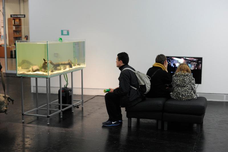 tensta-museum-gronlingen